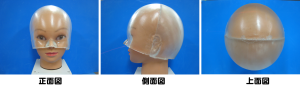 Borus head2